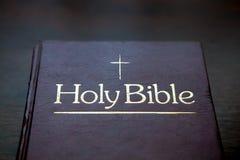 Boek, Lezing, de Heilige Bijbel Stock Afbeeldingen
