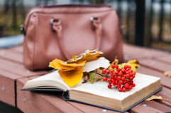 Boek met ashberry op de bank Stock Foto