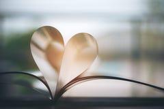 Boek met hartsymbool Royalty-vrije Stock Afbeelding