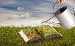 Boek op het gras Stock Foto's