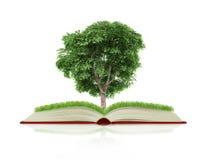 Boek van aard met gras en boom de groei Royalty-vrije Stock Afbeeldingen