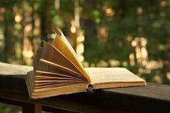 Boek van poëzie Stock Afbeelding