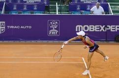 Boekarest opent 2014 - 10 07 2014(12) Stock Afbeeldingen