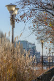 """Boekarest, Roemenië †""""13 Januari: De dijk van de Dambovitarivier Stock Afbeelding"""