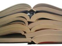 Boeken, boeken, boeken, Royalty-vrije Stock Afbeelding