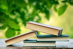 Boeken in de lente Stock Afbeeldingen