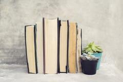 Boeken en bloempotten Stock Afbeeldingen
