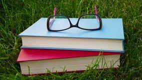 Boeken en glazen op het gras stock afbeelding