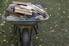 Boeken in Karretje Royalty-vrije Stock Foto's