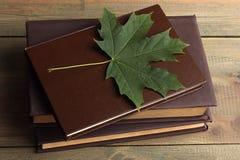 Boeken met bladeren Stock Afbeeldingen