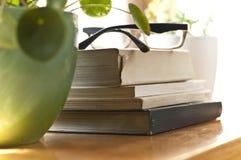 Boeken op een plank Royalty-vrije Stock Afbeelding