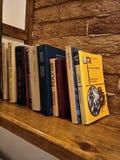 Boeken op een plank tegen een bakstenen muur stock afbeelding