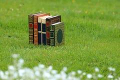 Boeken op gras Stock Afbeelding