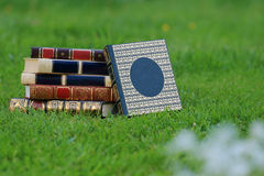 Boeken op gras Stock Afbeeldingen