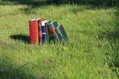 Boeken op gras Stock Foto's