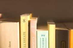 Boekenrek royalty-vrije stock afbeelding