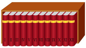 Boekenrek met boeken Stock Foto