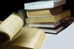 Boekenwurm Royalty-vrije Stock Afbeeldingen