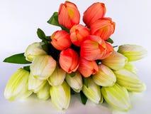 Boeket, bos van bloemen, bloem, installatie, Litouwen Stock Afbeeldingen