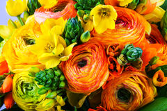 Boeket gele en oranje ranunkulyus met groene bladeren Royalty-vrije Stock Foto's