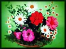Boeket kleurrijke bloemen Stock Afbeelding