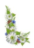 Boeket met kleurrijke geïsoleerder de zomerbloemen Stock Fotografie