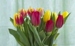 Boeket met tulpen stock afbeeldingen