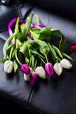 Boeket mooi van witte en violette tulpen op zwarte zetel in c Stock Afbeelding