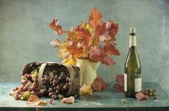 Boeket van bladeren en wijnstok royalty-vrije stock foto