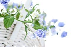 Boeket van blauwe de lentebloemen in witte mand Royalty-vrije Stock Afbeelding
