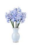 Boeket van blauwe hyacinten royalty-vrije stock afbeelding