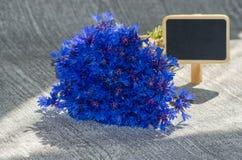 Boeket van blauwe korenbloemen Stock Afbeeldingen