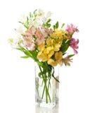 Boeket van bloem Alstroemeria stock foto