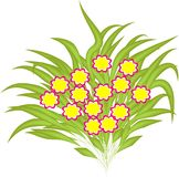Boeket van bloemen Stock Afbeeldingen