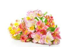 Boeket van bloemen Alstroemeria royalty-vrije stock fotografie