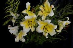 Boeket van bloemen op zwarte achtergrond royalty-vrije stock afbeelding