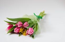 Boeket van bloemen: tulpen en Mimosa in tsellofannovy shell Royalty-vrije Stock Afbeeldingen