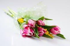 Boeket van bloemen: tulpen en Mimosa in tsellofannovy shell Stock Fotografie