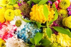 Boeket van bloemen in verschillende kleuren royalty-vrije stock afbeelding