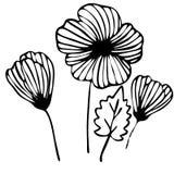 Boeket van bloemenkrabbel dat in overzicht voor het kleuren wordt getrokken Stock Afbeelding