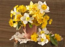 Boeket van bloemennarcissen Stock Afbeeldingen