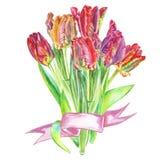 Boeket van bloementulpen in waterverf worden met een lint wordt verbonden geschilderd dat Stock Foto
