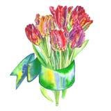 Boeket van bloementulpen in waterverf worden met een lint wordt verbonden geschilderd dat Stock Foto's