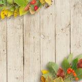 boeket van de herfstbladeren op houten achtergrond Royalty-vrije Stock Foto's