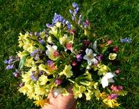 Boeket van de Lente Wildflowers royalty-vrije stock foto