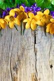 Boeket van de lentebloemen Royalty-vrije Stock Fotografie