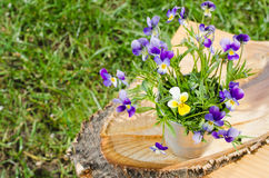 Boeket van de lentebloemen in een vaas op een besnoeiingsboom Royalty-vrije Stock Fotografie
