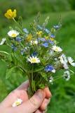Boeket van de lentebloemen in haar hand Selectieve nadruk Royalty-vrije Stock Afbeeldingen