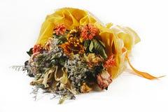Boeket van droge bloemen Stock Afbeelding