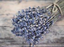 Boeket van droge lavendel Stock Fotografie